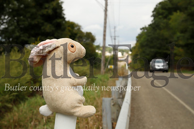 A stuffed rabbit watches traffic pass by on East Butler Road near the Rustic Ridge Mobile Home Park and East Butler. Passers by have noticed that the road has been populated by a number of continually alternating plush toys. Workers from a Saint Vincent DePaul warehouse in East Butler suspect the animals are coming from the warehouse dumbster. Seb Foltz/Butler Eagle