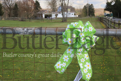 #WeGotThisButlerCounty, a campaign launched this week by the Butler Eagle, is an effort to empower communities and show support for frontline workers. This ribbon is on a fence at Novel Breads Co. on Moose Road.  The ribbon campaign is raising money for Butler Health System Foundation to buy personal protective equipment. seb foltz/butler eagle