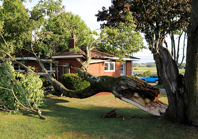 A downed tree that landed on the garage of Curt Riddle in Worthington Tuesday.Wittnesses described what they believed to be a microburst ripping through town bringing down a number of tree limbs and damaging property.  Seb Foltz/Butler Eagle.
