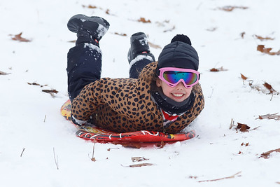 Sadie Thompson  of Harmony sleds down the hill at Moraine State Park's South Shore Thursday. Seb Foltz/Butler Eagle