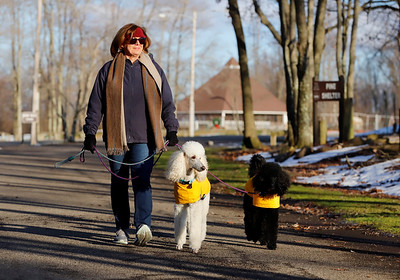 Cheryl Youkers of Butler takes advantage of sunny skys to walk her dogs Jemma(center) and Bryn in Alemeda Park Tuesday. Seb Foltz/Butler Eagle 12/29/20