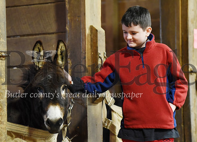 Harold Aughton/Butler Eagle: Wyatt Herschell, 10, of Zelienople engages Enchi - Lada, a miniature donkey during the Equine Assisted Wellness Workshop at Glade Run Adventures Sunday, February 2, 2020.