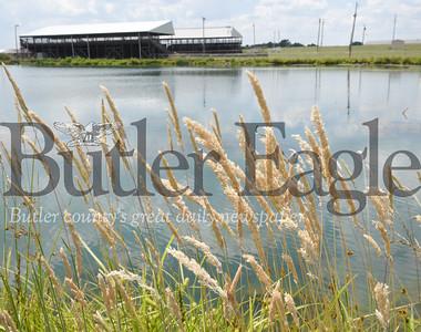 Harold Aughton/Butler Eagle: Farm Show