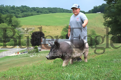 Mason Dupe, 11, of Meridian takes his five-month-old, roughly 200-pound, pig Swoopty for a walk on the family farm near Herman. Seb Foltz/Butler Eagle 07/07/20