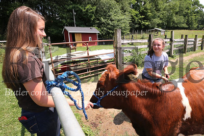 Brooklyn Peters, 18, of Connoquenessing washes her cow Peanut, working on the family farm with her sister Robin Peters, 22. Seb Foltz/Butler Eagle 07/07/20