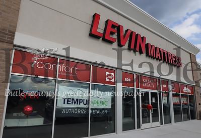 Levin 1