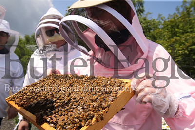 Guests to the Cranberry Highlands' Community Apiary examine beehive frames Sunday. Seb Foltz/Butler Eagle. 07/19/20