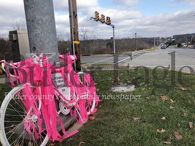 This Òghost bikeÓ honoring Aleksander Teimouri was put in place Thursday at the intersection of Rochester and Haine School roads in Cranberry Township. Teimouri was struck by an alleged drunken driver Dec. 26 as he was riding his bicycle home from work on Rochester Road. The Òghost bikeÓ serves as a symbol of remembrance for cyclists who have died, and aim to remind drivers to be attentive of those on bikes. A memorial ride in TeimouriÕs honor is scheduled for 12:30 p.m. Sunday departing from Graham Park, with riders completing his final ride.