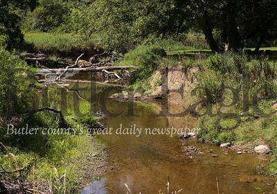 Log jams on Thorn Creek are causing area residents concerns regarding errosion and trash piling up during floods. Seb Foltz/Butler Foltz 07/29/20