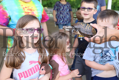 Sophia Potter of Butler goes eye-to-eye with a turtle during Butler County Parks and Recreation's kickoff to their summer Outdoor Discovery Series at Alemeda Park Thursday evening. Seb Foltz/Butler Eagle
