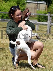 Harold Aughton/Butler Eagle: Lindsay Mysliwiec, a Seneca Valley school teacher, gets a hug from her 7-month-old German Short Hair pointer, Rigley, at Alameda dog park, Wednesday, June 24, 2020.