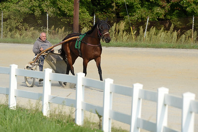 Gary Johnston takes one of his horses for a jog around the Butler Farm Show track. Harold Aughton/Butler Eagle.