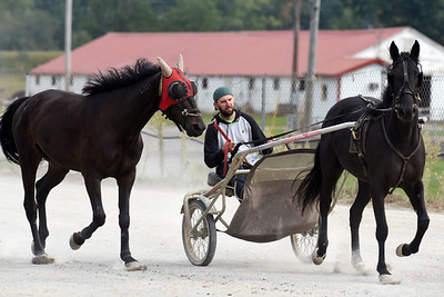 Shawn Johnston takes a lap around the Butler Farm Show track. Harold Aughton/Butler Eagle.