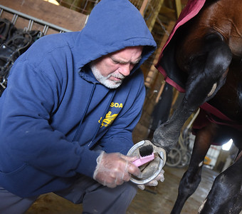 Gary Johnston cleans the hooves of of his horse after a training session. Harold Aughton/Butler Eagle.
