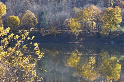 Fall foliage along the Allegheny River near East Brady Harold Aughton/Butler Eagle