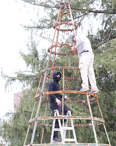 Eddie Gonzalez (left) and Efrain Santiago construct the town of Slippery Rock's new artificial Christmas tree in Slippery Rock Memorial Park Tuesday. The tree was brought to Slippery Rock from Florida through efforts by Slippery Rock University professor Dr. Mary Jo Ross and the school's  hospitality and event mangement progam. Seb Foltz/Butler Eagle 11/17/20
