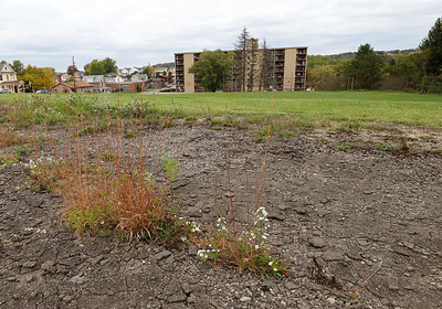 Site of the old Southside Playground by Father Marinaro Park. Seb Foltz/Butler Eagle 10/06/20