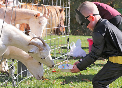 Mason Lewis, 5, feeds goats Saturday at Butler Parks and Recreation's Monster Walk at Alemeda Park. Seb Foltz/Butler Eagle
