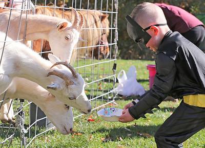 Mason Lewis, 5, feeds goats Saturday at Butler Parks and Recreation's Monster Walk at Alemeda Park. Seb Foltz/Butler Eagle