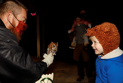 Audubon Society of Western Pennsylvania education director Chris Kubiak shows a screetch owl to Rosemary Resnick, 2, and guests at Succop Nature Park's Creatures of the Night event Saturday. Seb Foltz/Butler Eagle 10/24/20