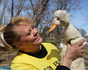 Holly Mead and her magazine model duck Gertrude. Seb Foltz/Butler Eagle 03/30/21