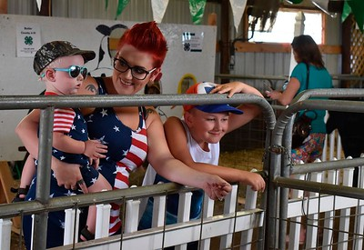 Butler Township mom Amanda Dowdy and her sons, 1-year-old Racer Zedreck and 7-year-old Hunter Jackman, enjoyed checking out all the animals in the petting zoo at the Big Butler Fair on Thursday. Hosted by the Butler County 4-H Clubs, the petting zoo features docile, domestic animals raised by local youth. ANDIE HANNON/BUTLER EAGLE