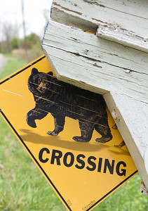 Nancy Roach of Middlesex Twp.stands in front of her broken porch fence that she believed was damaged by a black bear. The sign, a quarter mile from Nancy Roach's house is an appropriately placed bear crossing sign along old route 8 in Middlesex Twp.  Harold Aughton/Butler Eagle.