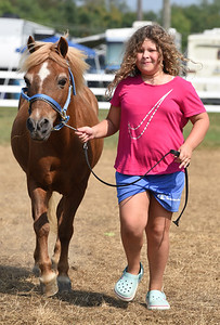 Teagan Bowers, 9, prepares for the Halter Class competition with her minaure pony, Shooter at the Butler Farm Show Monday afternoon. Harold Aughton/Butler Eagle