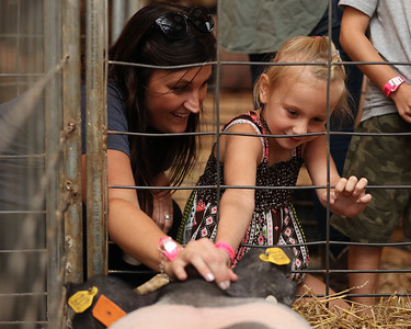 Eliza Clark, 6, of Butler pets a pig with her aunt Lynsey Bleicher at the Butler Farm Show Friday. Seb Foltz/Butler Eagle 08/13/21
