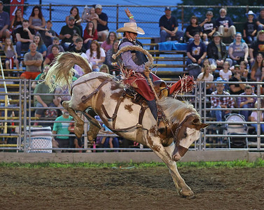 Stephen Graefen competes in the bronc riding at the Washington Rodeo Tuesday night. Seb Foltz/Butler Eagle 08/17/21