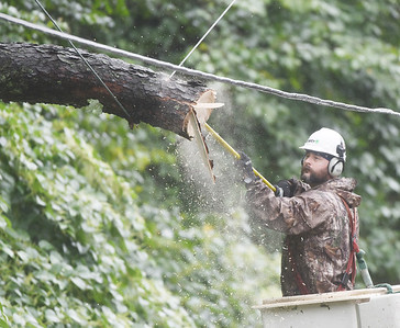 A worker removes a tree that fell across electrical lines knocking out power to more than 25 West Penn Power customers along Pierce Ave. Wednesday afternoon. Harold  Aughton/Butler Eagle