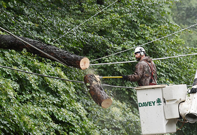 A worker removes a tree that felll across electrical lines along Pierce Ave knocking out power to more than 25 West Penn Power customersr Wednesday afternoon. Harold  Aughton/Butler Eagle