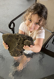 DAY NEWS 8/23 Arizona Hodak, 4, of Mount Chestnut holds the fossil of a lepidodendron tree root she found in a creek while hunting for salamanders. ERIC FREEHLING/BUTLER EAGLE