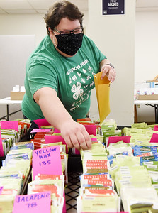 Amy Metrick of the Penn State Extension office in Butler fulfills a seed order for the 4-H. Harold Aughton/Butler Eagle.