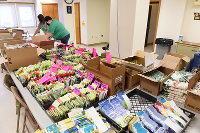 Amy Metrick and Jennifer McIntire of the Penn State Extension office in Butler fulfills seed orders for the 4-H. Harold Aughton/Butler Eagle.
