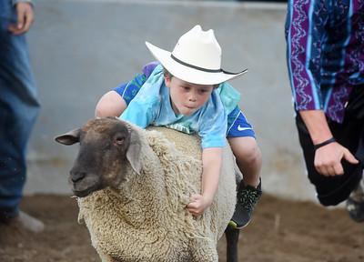 Mutton Busting was part of Bullride Mania at the Big Butler Fair Saturday. Harold Aughton/Butler Eagle.