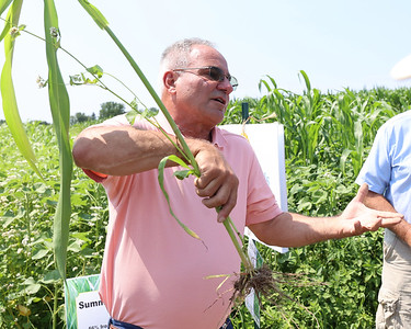 Farmer Rick Bieber describes benefits of different cover crops in order to maintain nutrients in soil and prevent water runoff during a field day with the Pennsylvania No Till Alliance at Thiele Dairy Farm in Cabot. Seb Foltz/Butler Eagle 07/23/21