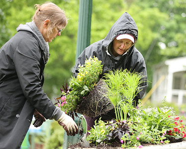 Liz Braho(left) and Stephanie Ralson plant flowers in Slippery Rock Memorial Park Saturday along with volunteers from the Slippery Rock Rotary's Slippery Rock in Bloom group. Seb Foltz/Butler Eagle 05/29/21