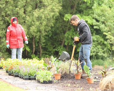 Slippery Rock High School senior Nick Ayres plants flowers in Slippery Rock Memorial Park Saturday along with volunteers from the Slippery Rock Rotary's Slippery Rock in Bloom group. Seb Foltz/Butler Eagle 05/29/21