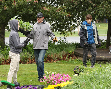 Volunteer plant flowers in Slippery Rock Memorial Park Saturday, part of the Slippery Rock Rotary's Slippery Rock in Bloom group. Seb Foltz/Butler Eagle 05/29/21