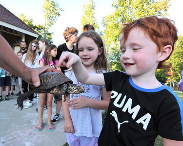 Kieran,4, and his sister Maeve take turns petting a turtle at Thursday evenings Outdoor Discovery Series Presentation on reptiles and Amphibians at Alemeda Park. Seb Foltz/Butler Eagle