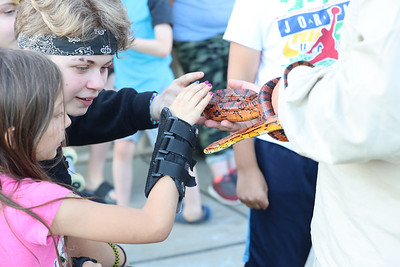 Area children pet a corn snake at Alemeda Park's Outdoor Discovery Series presentation on Reptiles and Amphibians Thursday at Alemeda Park. Seb Foltz/Bulter Eagle