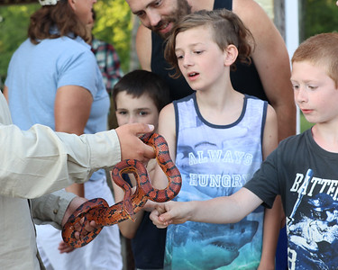 Brayden Friedrich, 12, center and other area kids pet a corn snake at Thursday's Outdoor Discovery Series presentation on reptiles and amphibians at Alemeda Park. Seb Foltz/Butler Eagle