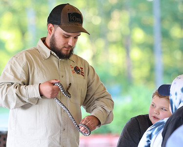 Josh Magyar shows a milk snake to attendees at Thursday evening's Outdoor Discovery Series presentation at Alemeda Park. Seb Foltz/Butler Eagle 06/17/21