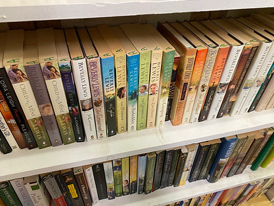 """Amish books are labeled """"A"""" across the top at Readers' Paradise in Oakland Township. Andy Andrews/Butler Eagle"""