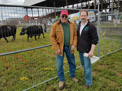 DAY NEWS 5/10 Guy Daubenspeck, who donated the cows, left, and Stu Surkosky, one of the organizers of the Kids Day America Cow Patty Bingo Event Saturday at the Butler Farm Show grounds, stood in front of the enclosure waiting for the next square to be filled. ERIC FREEHLING/BUTLER EAGLE