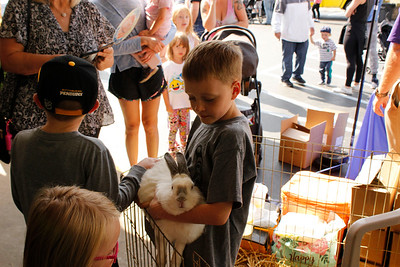 Luke Lenz, 7, holds Luna the rabbit in the petting zoo at the Mars Agway Touch a Truck on Saturday. Julia Maruca/Butler Eagle