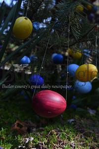 Harold Aughton/Butler Eagle: Bonnie and Carli Cahill of 1118 Saxonbur Road, have placed over 1200 decorated easter eggs on the two pine trees in their front yard.