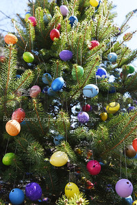 Bonnie and Carli Cahill of 1118 Saxonburg Road, have placed over 1200 decorated and hand-painted Easter eggs on the two pine trees in their front yard.     Harold Aughton/Butler Eagle:  april 2020