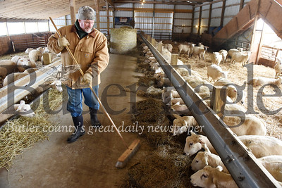 Harold Aughton/Butler Eagle: Harold Dunn of Connoquenessing Twp. feeds his sheep Tuesday, January 21, 2020.